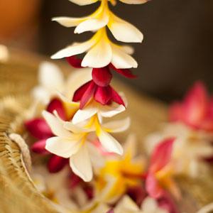 Fresh Flower Leis